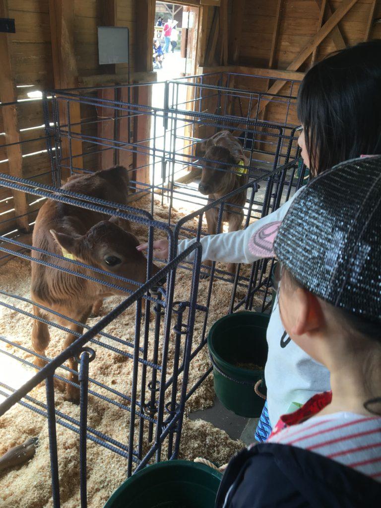モクモク体験農場
