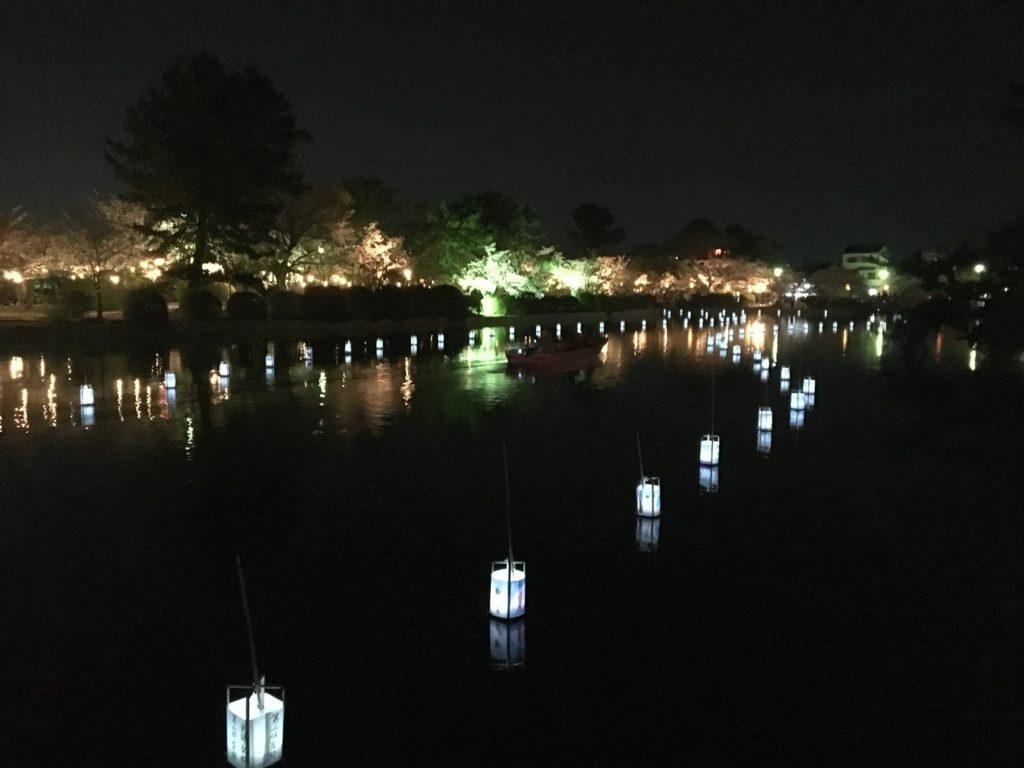 九華公園夜桜堀に浮かぶ灯篭