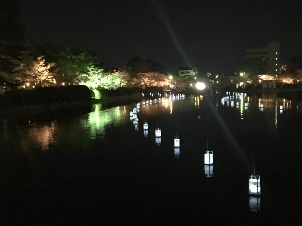 九華公園花見夜の堀に浮かぶ灯篭