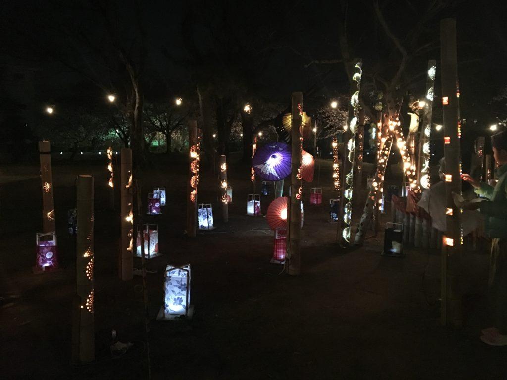 九華公園花見明かり