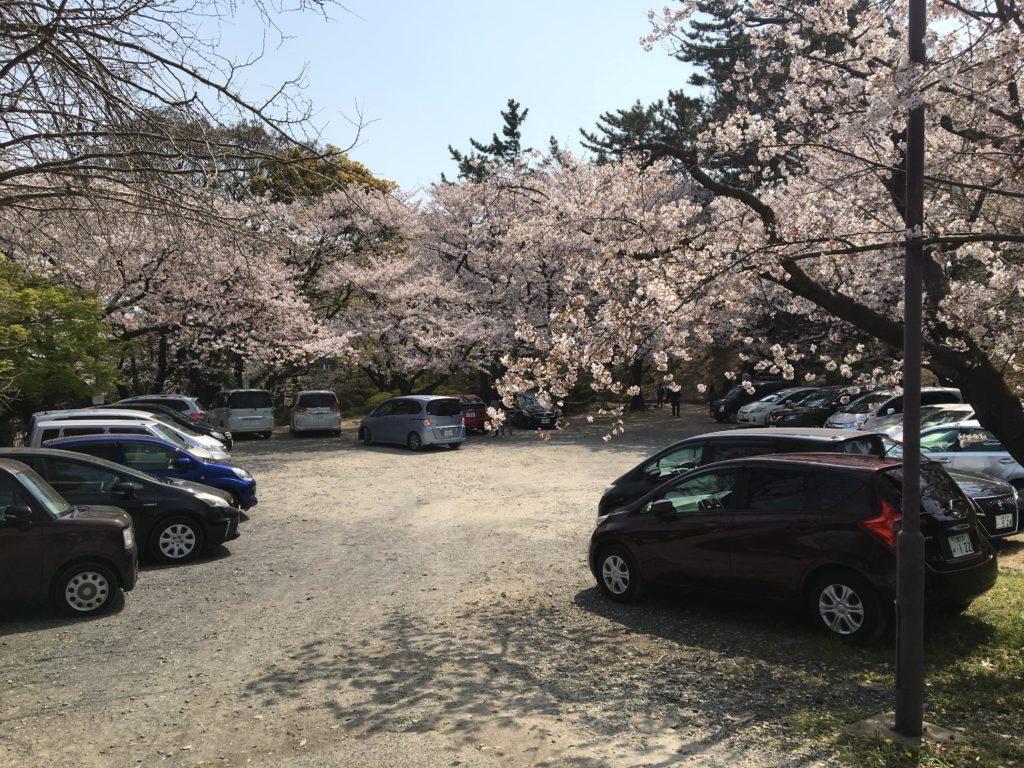 走井山公園の駐車場