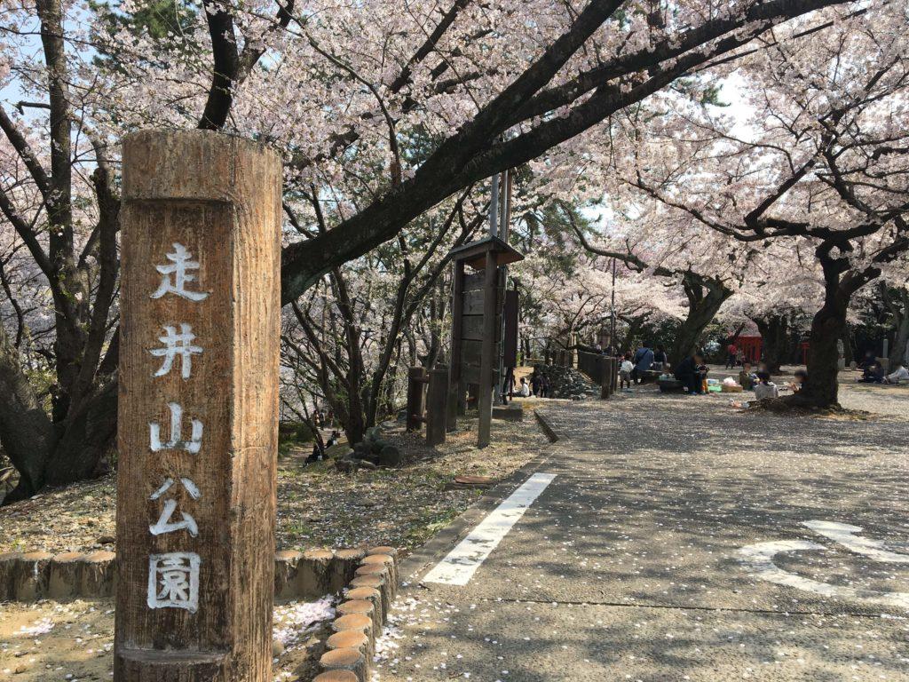 走井山公園の入り口